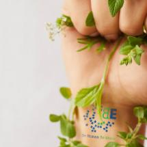 ecologia, be human be green
